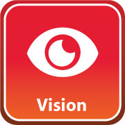 visionicon